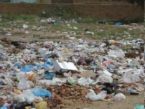 Plastic bag pollution - a major problem