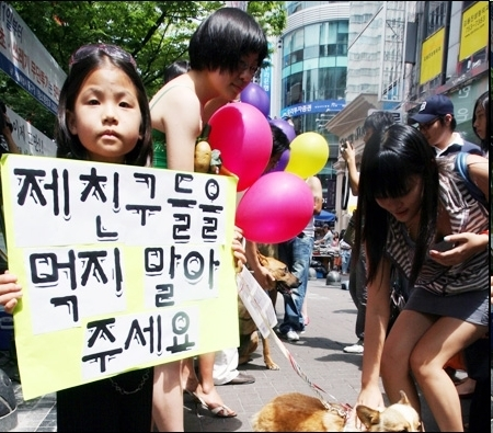 A South Korean child protests against eating  dog meat