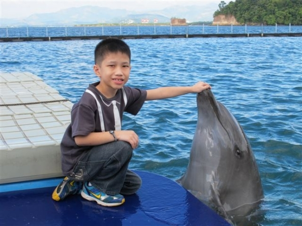 A close encounter with a dolphin